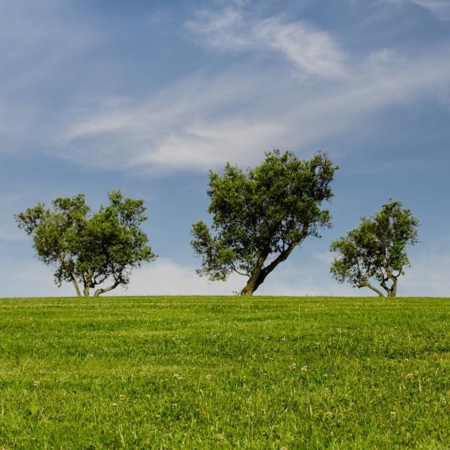 landscape-nature-sky-blue Cropped
